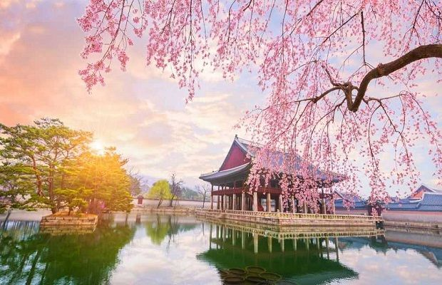 Hàn Quốc thông báo cho khắp cả nước về việc gia hạn giãn cách xã hội thêm hai tuần